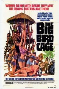 400px-Bigbirdcage